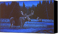 Bull Moose Canvas Prints - Algonquin Moonlight Canvas Print by Richard De Wolfe