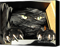 Spook Canvas Prints - Alices cat Canvas Print by Rebecca Margraf