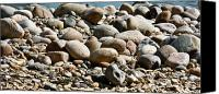 Pebbles Photo Canvas Prints - All Washed Up Canvas Print by Brian Roscorla