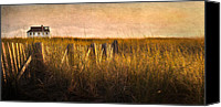 Cape Cod Scenery Canvas Prints - Along the Fence Canvas Print by Bill  Wakeley