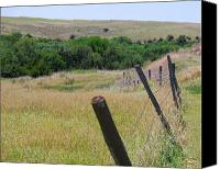 Barbed Wire Fences Canvas Prints - Along the fence row Canvas Print by Joe Wicks