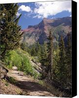 Marty Koch Canvas Prints - Along the Trail Canvas Print by Marty Koch