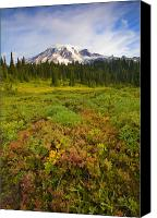 Mt. Rainier Canvas Prints - Alpine Meadows Canvas Print by Mike  Dawson