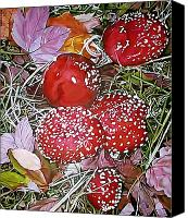 Magic Mushroom Canvas Prints - Amanita Canvas Print by Victor Bonderoff