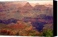 James Insogna Canvas Prints - Amazing Colorful Spring Grand Canyon View Canvas Print by James Bo Insogna