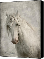 White Horses Canvas Prints - Amazing Grace Canvas Print by Dorota Kudyba