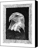 Eagle Drawings Canvas Prints - American Bald Eagle Canvas Print by Jack Pumphrey