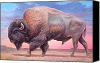 Buffalo Painting Canvas Prints - American Buffalo Canvas Print by Hans Droog