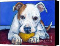 Dog Art Canvas Prints - American Bulldog with Yellow Ball Canvas Print by Dottie Dracos