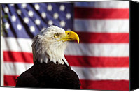 Stars And Stripes Canvas Prints - American Eagle Canvas Print by David Lee Thompson