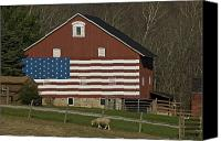 American Flag Canvas Prints - American Flag Painted On The Side Canvas Print by Todd Gipstein