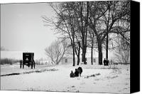 Fam Canvas Prints - Amish Sled Ride Canvas Print by David Arment