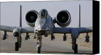 Iraq Canvas Prints - An A-10 Thunderbolt Ii Canvas Print by Stocktrek Images