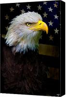 Bald Canvas Prints - An American Icon Canvas Print by Chris Lord