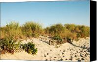 Sand Fences Canvas Prints - An Opening In The Fence - Jersey Shore Canvas Print by Angie McKenzie