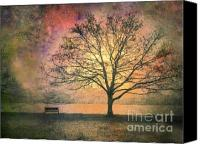 Bench Canvas Prints - And the Morning is Perfect in all Her Measured Wrinkles Canvas Print by Tara Turner
