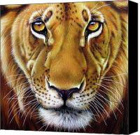 Lion Painting Canvas Prints - Andre Lion Canvas Print by Jurek Zamoyski