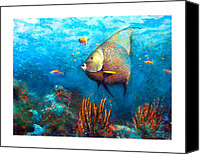Reef Canvas Prints - Angel Fish Canvas Print by Andrew King