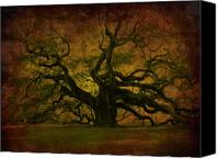 Tree Canvas Prints - Angel Oak 3 Charleston Canvas Print by Susanne Van Hulst