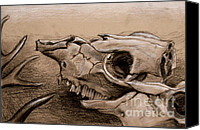 Skull Pastels Canvas Prints - Animal Bones Canvas Print by Samantha Geernaert