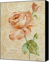 Old Fashioned Painting Canvas Prints - Antique Rose Canvas Print by Debbie  Lewis