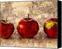 Still Life Photo Canvas Prints - Apple Canvas Print by Bob Orsillo