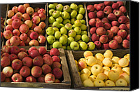 Fruit Markets Canvas Prints - Apple Harvest Canvas Print by Garry Gay