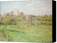 Impressionism Canvas Prints - Apple Trees at Gragny Canvas Print by Camille Pissarro