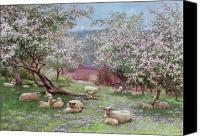 Trees Blossom Canvas Prints - Appleblossom Canvas Print by William Biscombe Gardner
