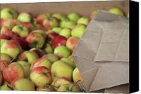 Shopping Canvas Prints - Apples For Sale Canvas Print by Odd Jeppesen