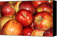 Farm Pyrography Canvas Prints - Apples Canvas Print by Yumi Johnson