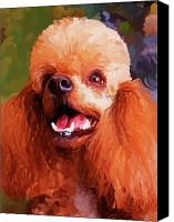 Dog Art Canvas Prints - Apricot Poodle Canvas Print by Jai Johnson