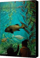 Jenkinsons Aqaurium  Canvas Prints - Aquarium 19 Canvas Print by Joyce StJames