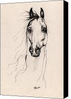 Horse Drawings Canvas Prints - Arabian Horse Drawing 25 Canvas Print by Angel  Tarantella