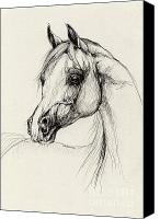Arabian Horse Drawings Canvas Prints - Arabian Horse Drawing 27 Canvas Print by Angel  Tarantella