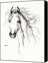 Arabian Horse Drawings Canvas Prints - Arabian Horse Drawing 4 Canvas Print by Angel  Tarantella