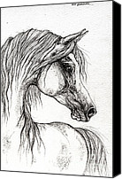Arabian Horse Drawings Canvas Prints - Arabian Horse Drawing 56 Canvas Print by Angel  Tarantella