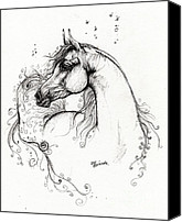 Arabian Horse Drawings Canvas Prints - Arabian Horse Drawing 8 Canvas Print by Angel  Tarantella