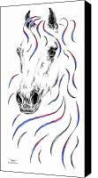 Arabian Horse Drawings Canvas Prints - Arabian Horse Style Canvas Print by Kelli Swan