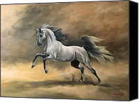 Arabian Canvas Prints - Arabian Canvas Print by Jeanne Newton Schoborg