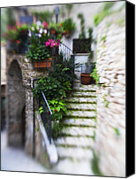 Begonia Canvas Prints - Archway and Stairs Canvas Print by Marilyn Hunt