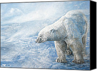 Polar Bear Canvas Prints - Arctic Sovereign Canvas Print by Cara Bevan