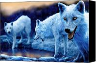 Featured Photo Canvas Prints - Arctic White Wolves Canvas Print by Mal Bray