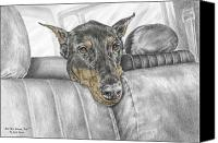 Pinscher Canvas Prints - Are We There Yet - Doberman Pinscher Dog Print color tinted Canvas Print by Kelli Swan