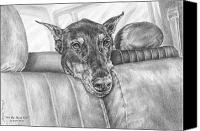 Dobermann Canvas Prints - Are We There Yet - Doberman Pinscher Dog Print Canvas Print by Kelli Swan