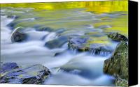 Green Photo Canvas Prints - Argen River Canvas Print by Silke Magino