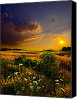 Fall Leaves Canvas Prints - Aridity Canvas Print by Phil Koch