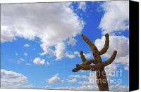 White Cacti Canvas Prints - Arizona Blue Sky Canvas Print by Susanne Van Hulst
