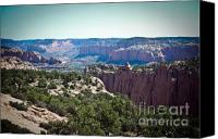 (c) 2010 Canvas Prints - Arizona Desert Landscape Canvas Print by Ryan Kelly