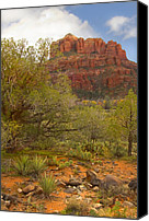 Red Rock Formations Canvas Prints - Arizona Outback 3 Canvas Print by Mike McGlothlen